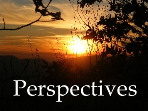 13--Perspectives